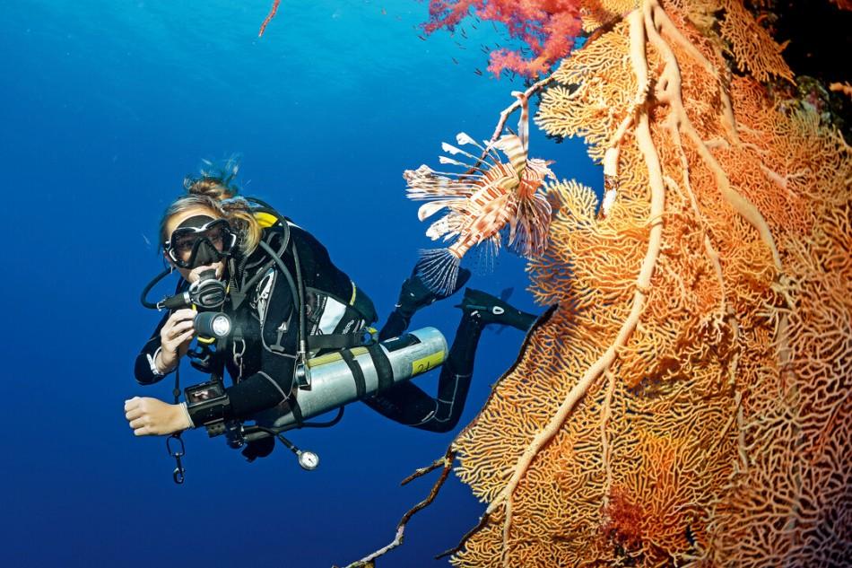 Decompresion Diving - szkolenie nurkowań dekompresyjnych