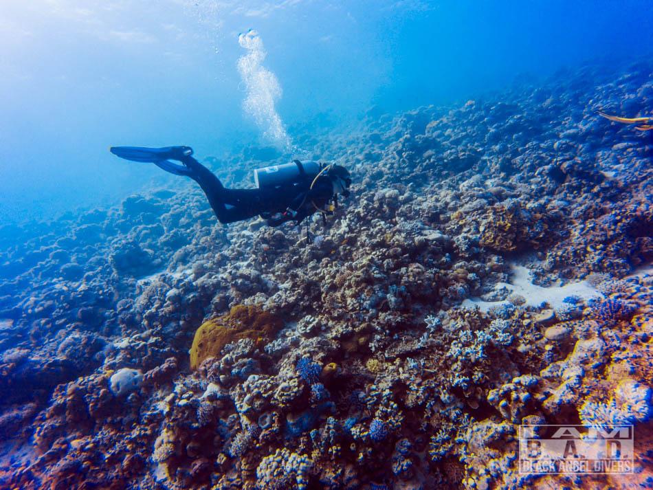 Kurs Advanced Open Water Diver