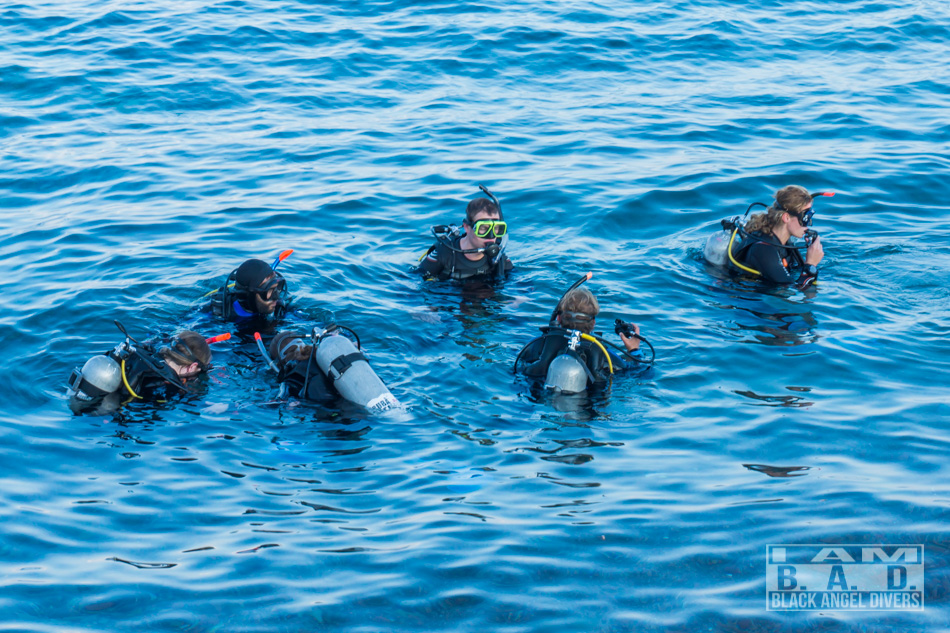 Nurkowanie w morzu, kurs nurkowy